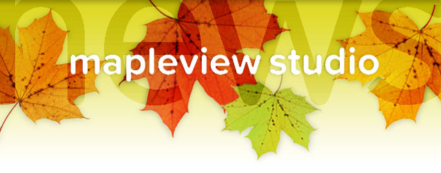 mapleviewstudio.ca